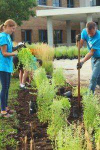 Volunteers planting a garden.